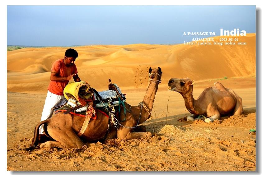 【触摸印度】塔尔沙漠之旅(二)