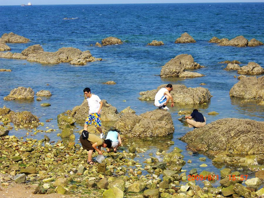 去了养马岛的海水浴场,人很多,于是姐夫领着我们来到这一僻静处,只
