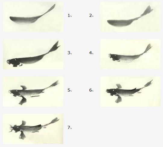 中国画技法——鲤鱼的画法