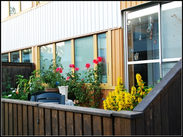 家庭小花園圍墻設計展示