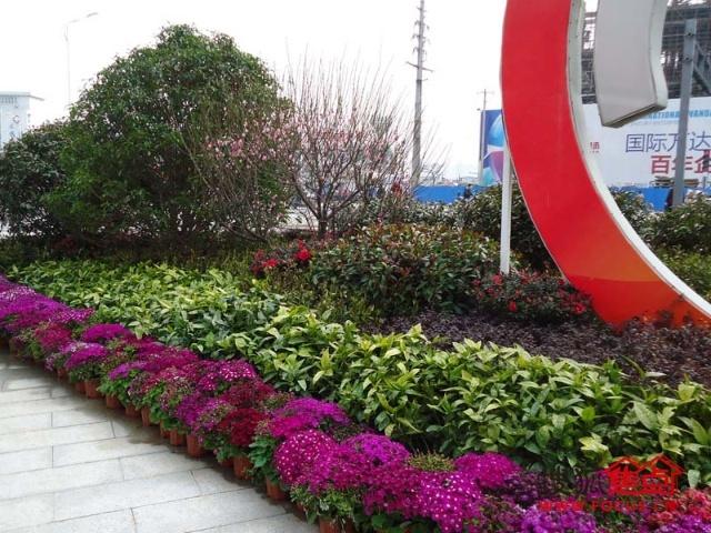 芜湖万达酒店式精装豪华单身公寓
