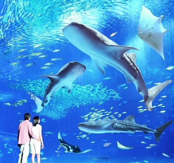 斐济 牵手七彩海洋   是否还记得电影《荒岛余生》里那个曾让汤姆?汉克斯迷失的美丽荒岛斐济?   在斐济这个全球明星最爱的蜜月天堂,一定要带她去浮潜。每天,斐济的海水随着时间悄然流逝,变幻着七彩颜色。即使最简单的浮潜,也可看到比在澳洲大堡礁深潜还要美丽的珊瑚、海葵和各式鱼类。当看着巴掌大的小丑鱼在你们身边游过,大群大群的鹦鹉鱼将海水搅得五彩缤纷,相信你们会完完全全沉醉到天堂里面去。   明星也爱斐济:   2006年,妮可基德曼和凯斯厄尔班这对最令人羡慕的新婚夫妇向全世界发表了自己的结婚宣言后,决定