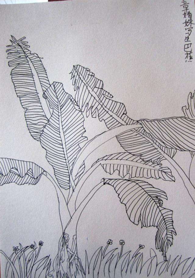 简笔画 手绘 线稿 640