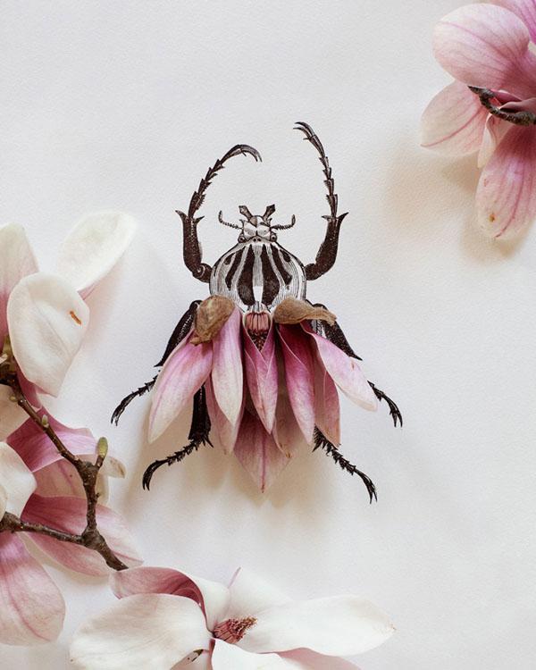 一花一世界 来自 轻博客 花朵与素描的巧妙融合
